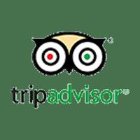 Trip Advisor Company Logo